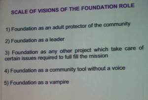 Role of Foundation - Mayo Fuster Morell