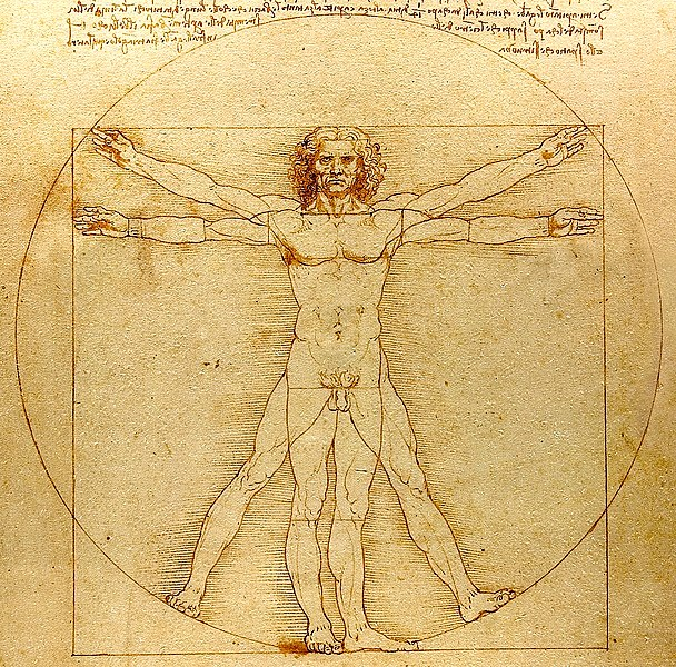 608px-0_The_Vitruvian_Man_-_by_Leonardo_da_Vinci