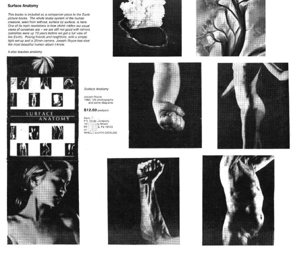 """book review for """"Surface Anatomy"""" featuring photos of arms, torsos and the head of a woman, all white."""