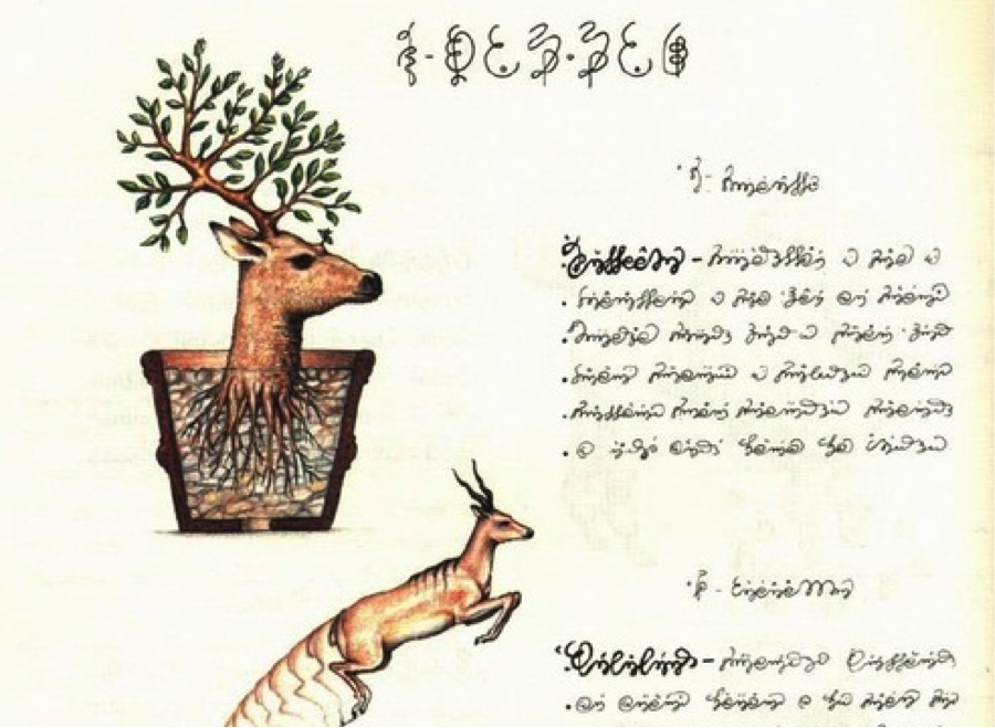 Luigi Serafini's Codex Seraphanius (1981)